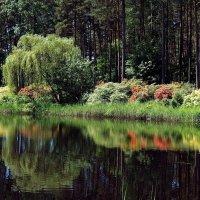 Цветущий сад :: Михаил Новиков