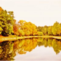 Осенних дней очарованье.... :: Ирина Князева