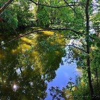 Безымянная речка :: Екатерина Ульянцева