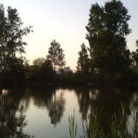 Деревья :: Любовь Иванова