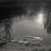 Сачок и солнце :: Lena Zalesska