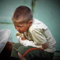 Раненый птенец :: Сергей Чиняев