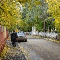 Прогулка в осень. :: Валерий Маслаков