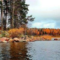 Ладога золотая осень :: Александр