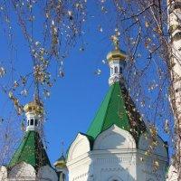 золотые купола :: Дмитрий Солоненко