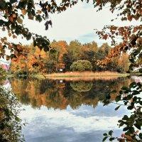 Осенняя краса :: Елена Гуляева (mashagulena)