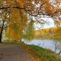 Осенью у Джамгаровского пруда. :: Николай Кондаков