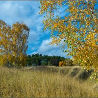 Краски осени :: Александр Лихачёв