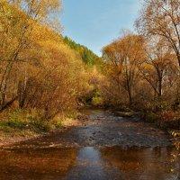 Рисует нам картины осень... :: Татьяна Соловьева