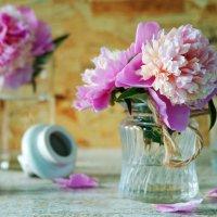 Розовые пионы :: Натали