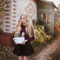 Осенний ромашковый чай :: Кира Пустовалова - Степанова