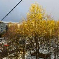 вот и встретились :и зима ,и осень :: Светлана Павловская