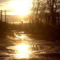 солнечный свет осенью :: Михаил