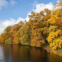 Осень в парке :: Николай Орехов