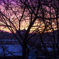 Утро в ярких красках! :: Олег CHE
