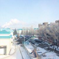 Морозное утро :: Katerina