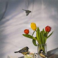 Весеннее утро в саду :: Нина Петренко