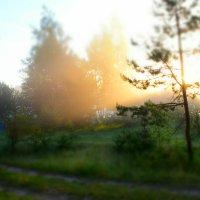 Походное утро :: Dmitry Photo_D