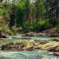 Протока реки Катунь. :: Сергей Гайнулин