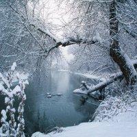 Снегопад на р. Нежеголь. :: Оксана Ильченко
