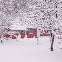 Зима на даче ... :: ВЕРА