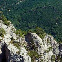 Лучше гор могут быть только горы! :: Мария Драницына