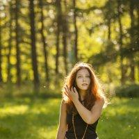 Солнечная :: Андрей Михайлин