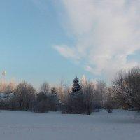 Март в пригороде Санкт-Петербурга :: Фотогруппа Весна - Вера, Саша, Натан