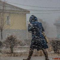 Вот такая весна! :: Юрий Фёдоров