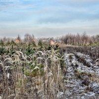 Путь домой :: Андрей Колмаков