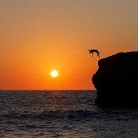 Прыжок в закат. :: Владимир Бадюля