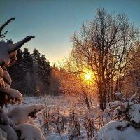 На встречу солнцу :: Сергей Малашкин