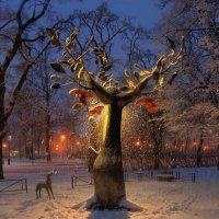 У дерева желаний :: Сергей Григорьев