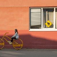 Cheap trip :: Екатерина Шувалова