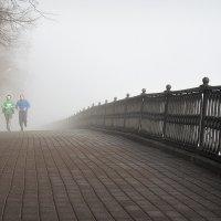 Туманное утро на Волжской набережной Ярославля :: Николай Белавин