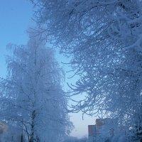 Зимним вечером ... :: Алёна Савина