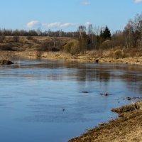 Весна на реке Тосна :: Денис Матвеев