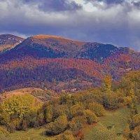 Золотые горы :: Alexandеr P