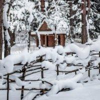 У леса на опушке, жила зима в избушке :: Ринат Валиев