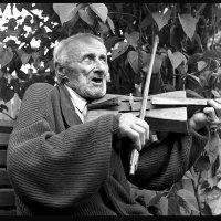 Владислав, который любит играть на скрипке. :: Romualdas Vinča