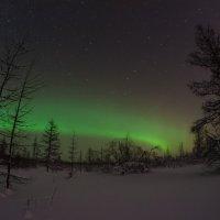 Северное сияние :: Kamil Nureev