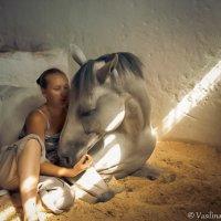 доверие :: Лина Любимова
