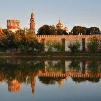 Новодевичий монастырь :: Марина