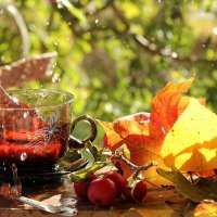 Осенний чай :: Татьяна Беляева