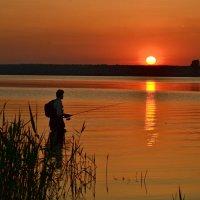 Рыбалка на закате. :: Игорь Рудяк
