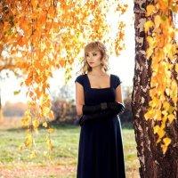 Осенние мечты :: Осень