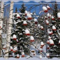 Новогодняя сказка :: Нина северянка
