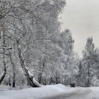 Затерянные  в  снег :: Vlad Borschev