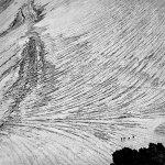 Фотовыставка Алексея Васильева «Геометрия природы»