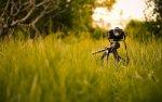 26 июня: Основы фотографии. Базовый курс